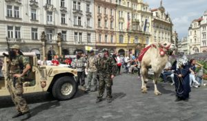 Camel immigrates to Prague.